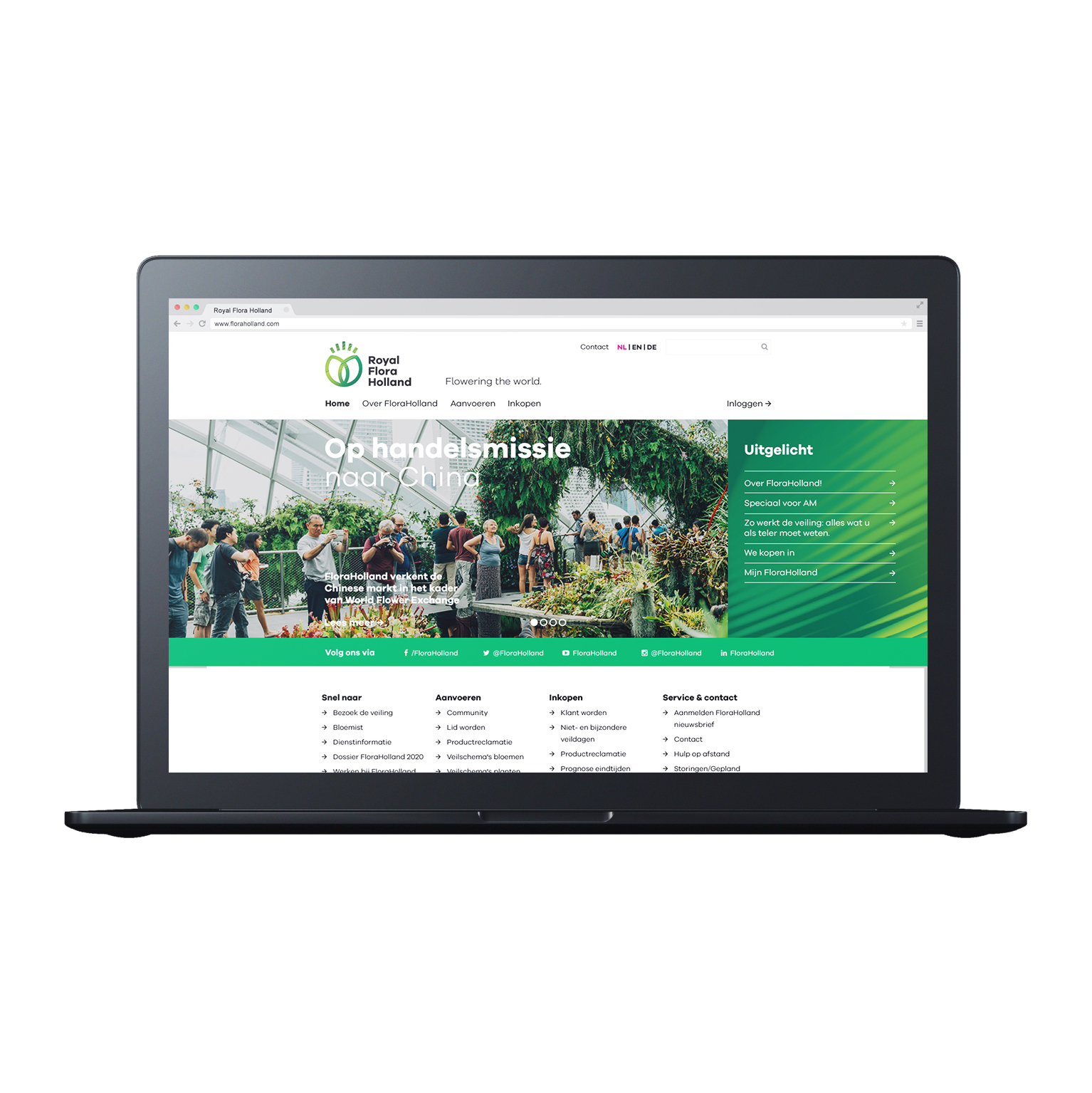 RoyalFloraHolland-WebsiteDesign